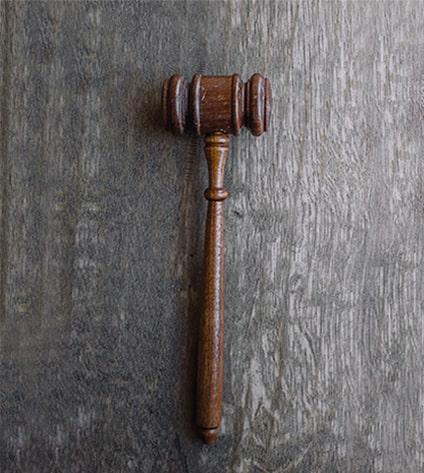Servicio Deloyers Litigation
